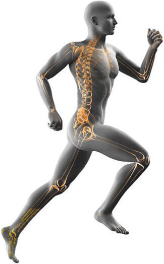 man running x-ray isolated on white